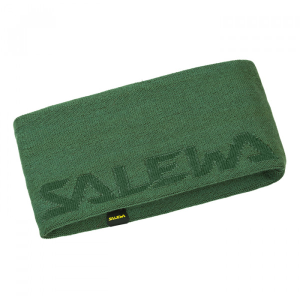 Salewa Pedroc Wo Stirnband Grün